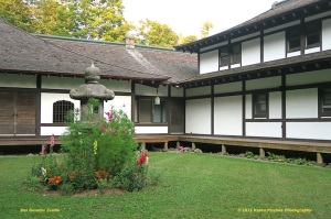 DBZ Zendo Courtyard