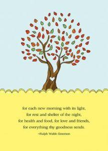 Gratitude Tree 40f31d1f4b765d68a0b3e3edeef86859