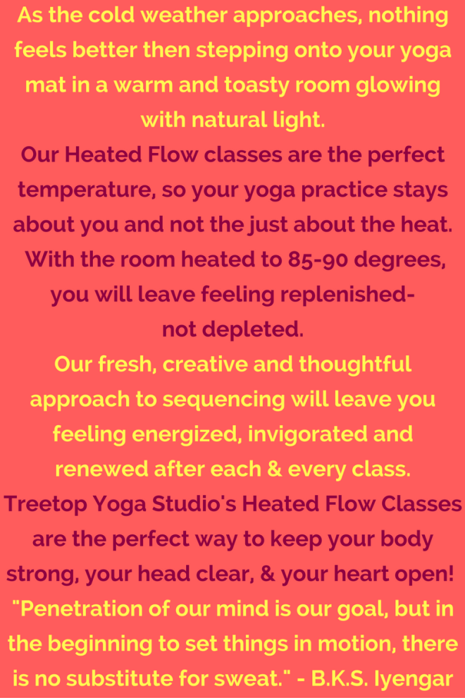 heated-flow-classes-at-treetop-1