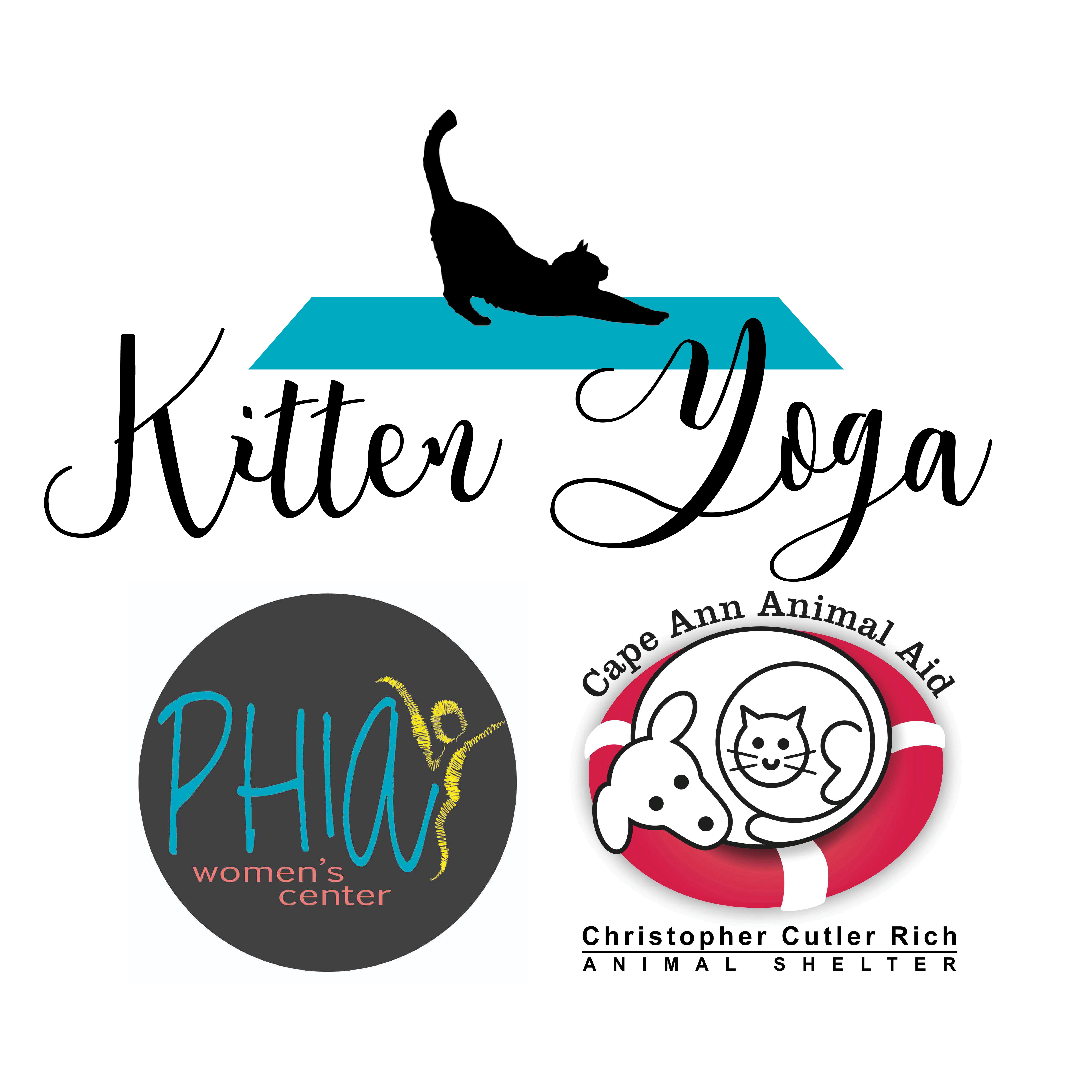 Kitten Yoga Graphic