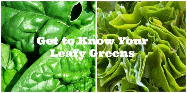 Leafy Greens ~