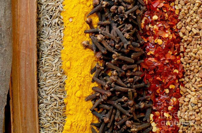 indian-spices-paul-cowan