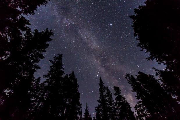 Stargazing ~