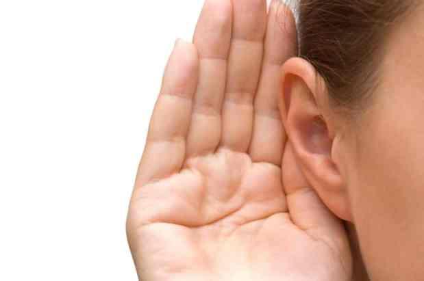 Ear oiling ~