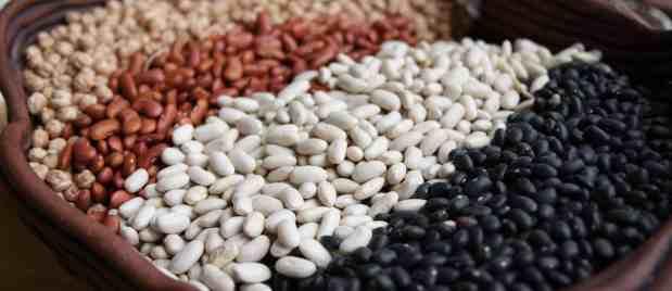 Beans ~
