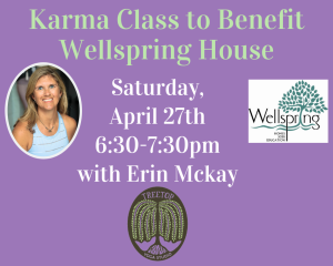 Karma Class to Benefit Wellspring House-2