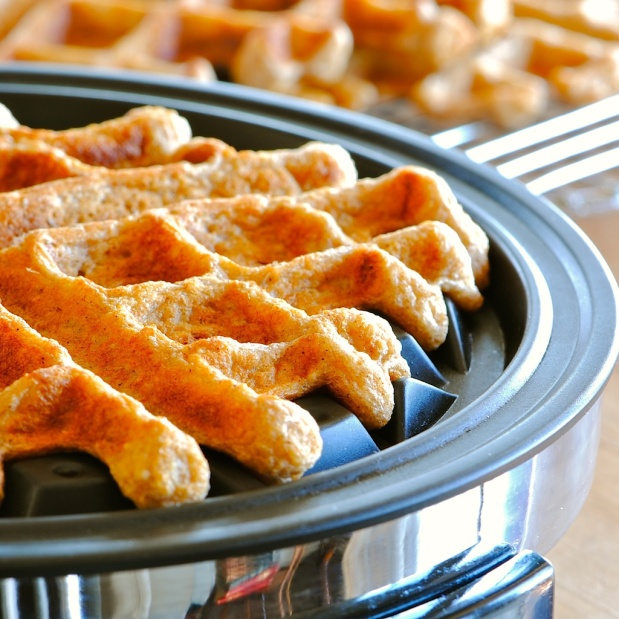 Oat Waffles ~