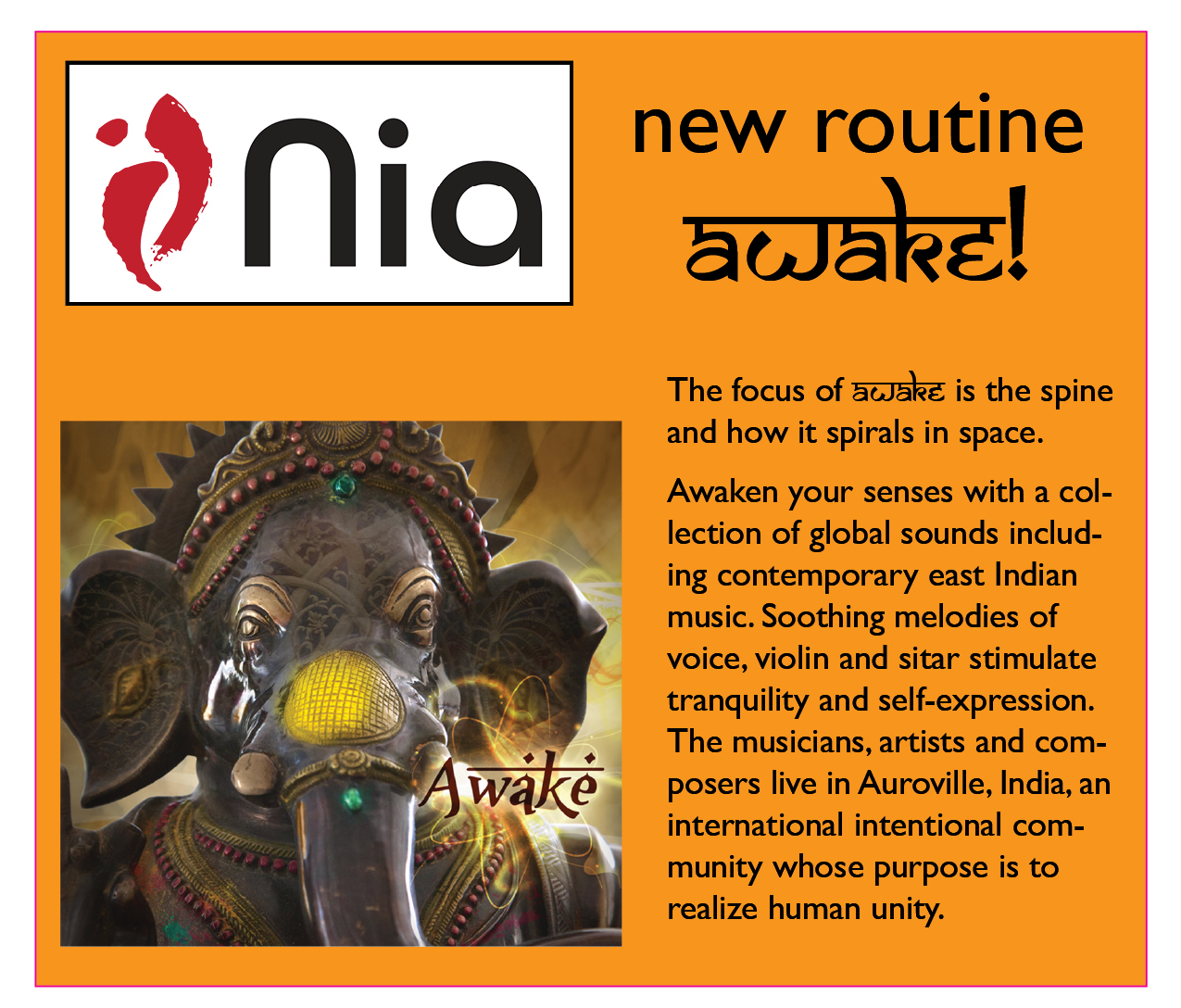 nia  awake flyer shout out graphic.jpg