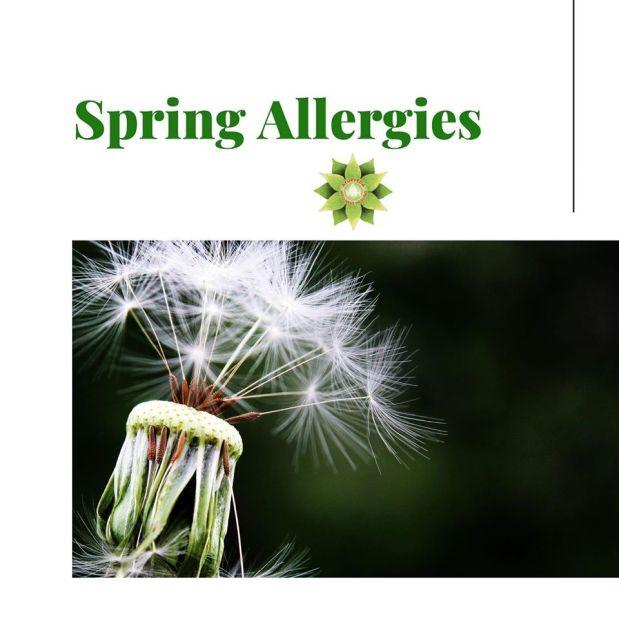 Spring Allergies ~