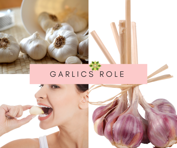 Garlics Role ~