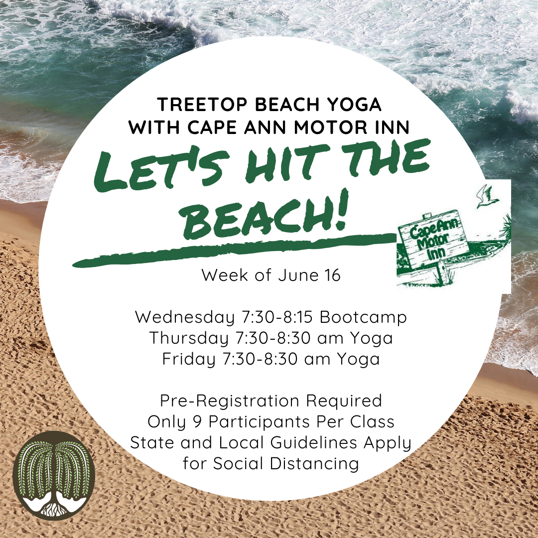 Treetop Beach yoga-4