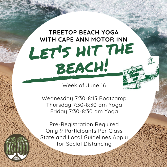 Treetop Beach yoga-4